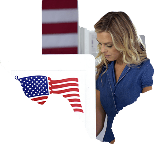 Election Integrity icon
