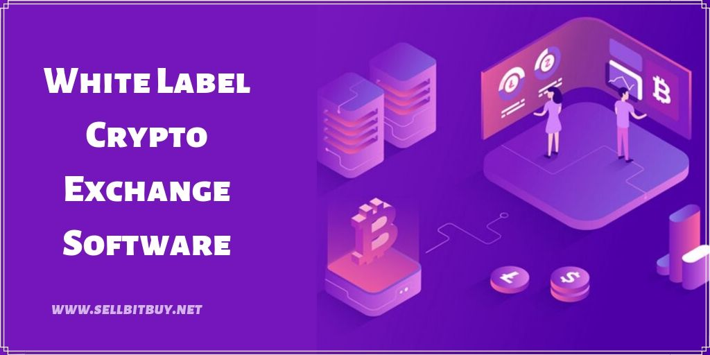 How to start a crypto exchange website with a white label crypto exchange Software?