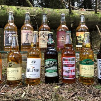 Mixed Artisan Cider Case