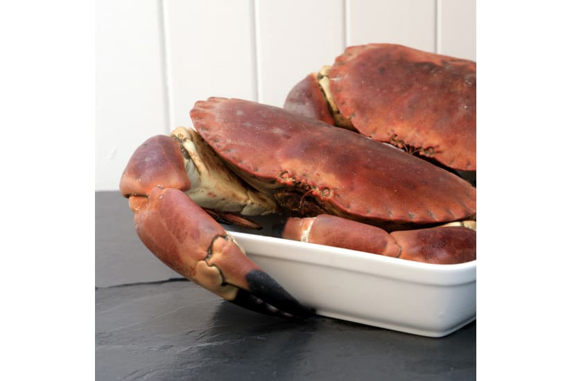 Whole Cooked Female Crab ( 3 x crabs )