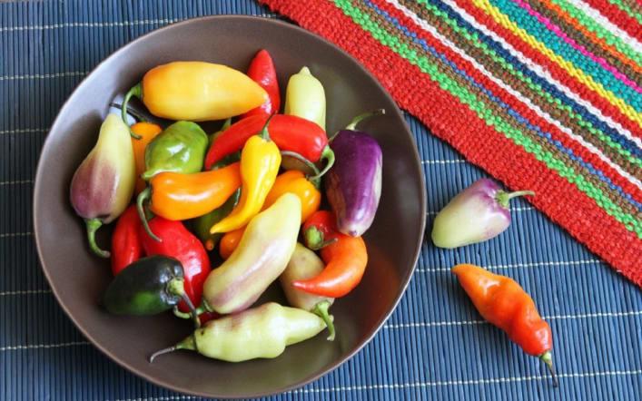 Taste Peru