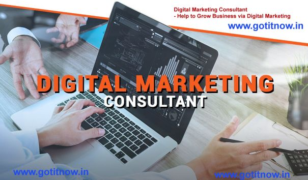 Hire Digital Marketing Consultant