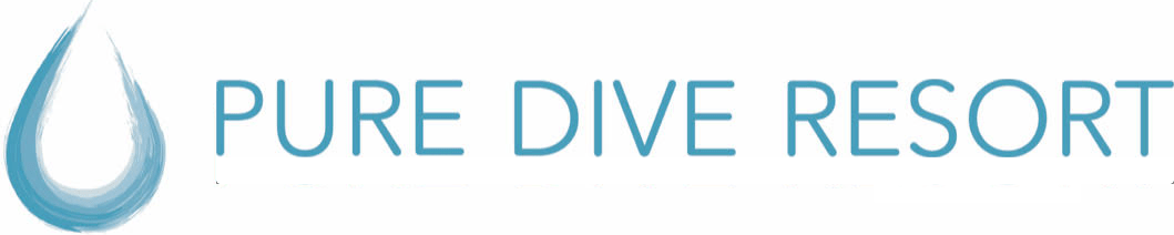 Pure Dive Resort – Eco Friendly Dive Resort on Nusa Penida