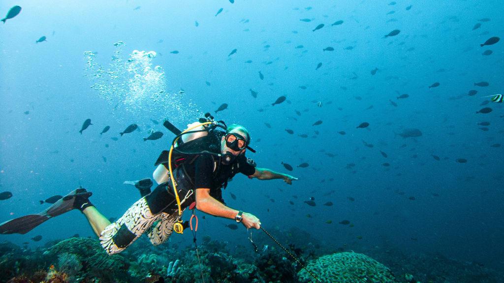 Drift Diving, Дайвинг в течениях