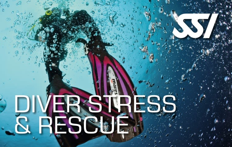 Rescue Diver Diver Stress & Rescue