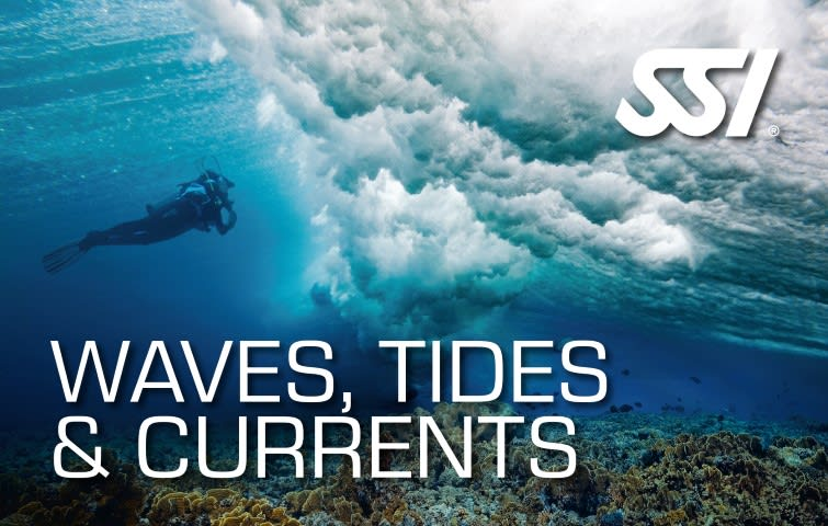 Advanced Scuba Training Waves, Tides and Curents Learn to dive in the drifts