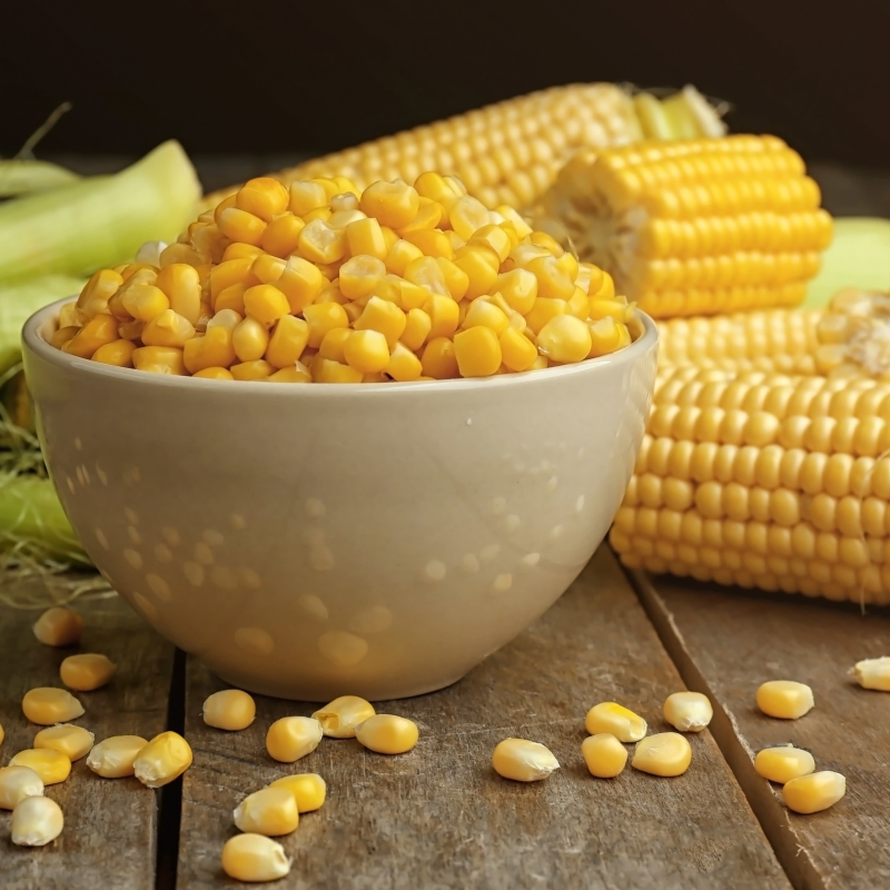 The Journey of Humble Corn in India