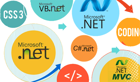 Onsite NET Backend Developers