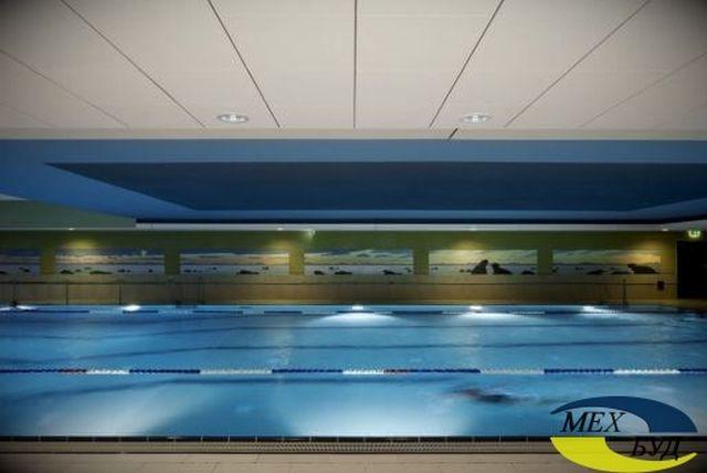 potolok-dlya-basseyna потолок в бассейне - 591b5448887e0 001 basseiny result d8hh6w - Металлические подвесные потолки для бассейнов и аквапарков