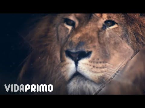 Tempo ft Wisin - Pegate a La Pared (Video Lyric Oficial) | Wisin 2018
