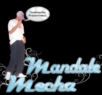 Mandale Mecha - Te Amo [Nuevo Tema] | Cumbia