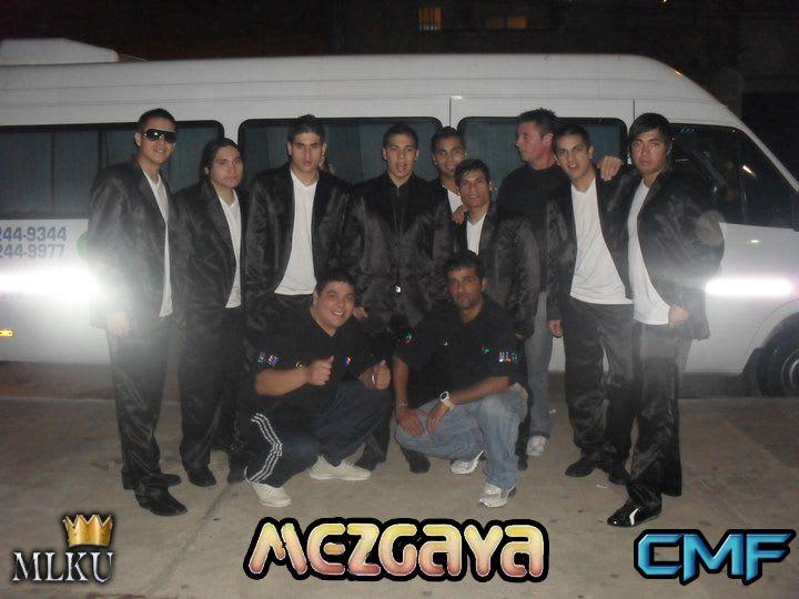 Mezgaya