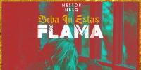 Nestor En Bloque - Beba Tu Estas Flama (Video Oficial) | Cumbia Argentina