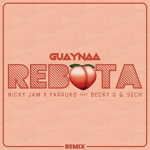 Guaynaa rebota remix