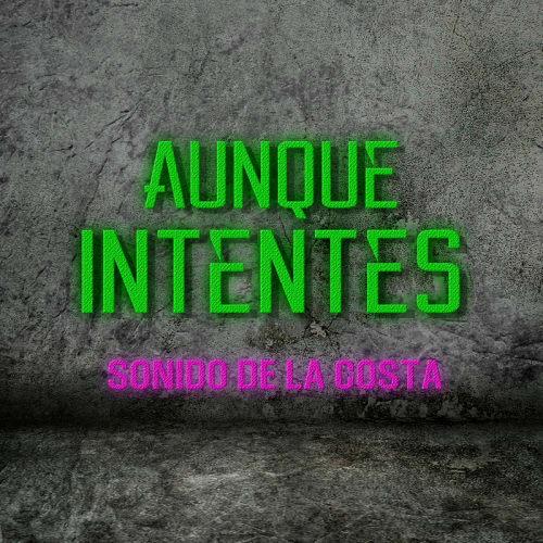 Sonido De La Costa 2019