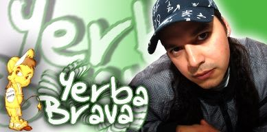Yerba Brava Ft 18 Kilates - Mentirosa [Nuevo 2011] | Cumbia