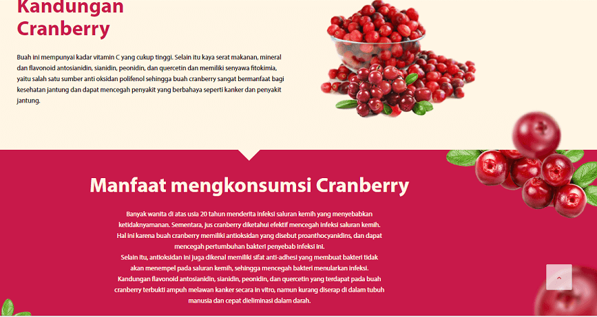 Manfaat Cranberry