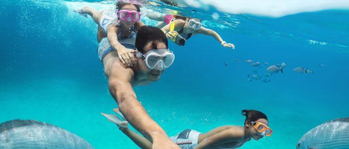 ni dessutom uppleva exotiska öar i Södra Karibien