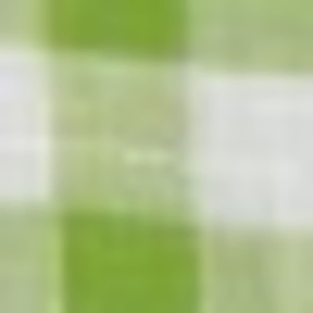 SPRING SM CHK-377