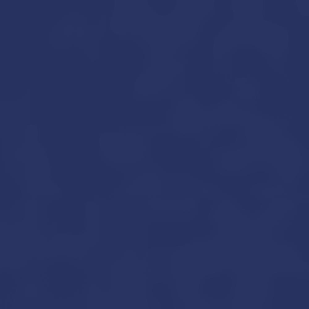2975-ARCTIC NAVY