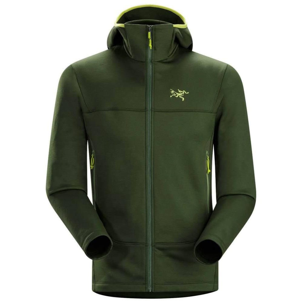 ARC'TERYX Men's Arenite Hoody - GREEN