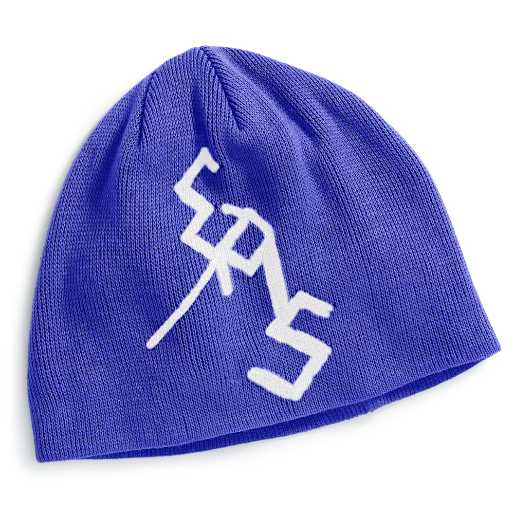 EMS Ice Axe Beanie - DAZZLING BLUE