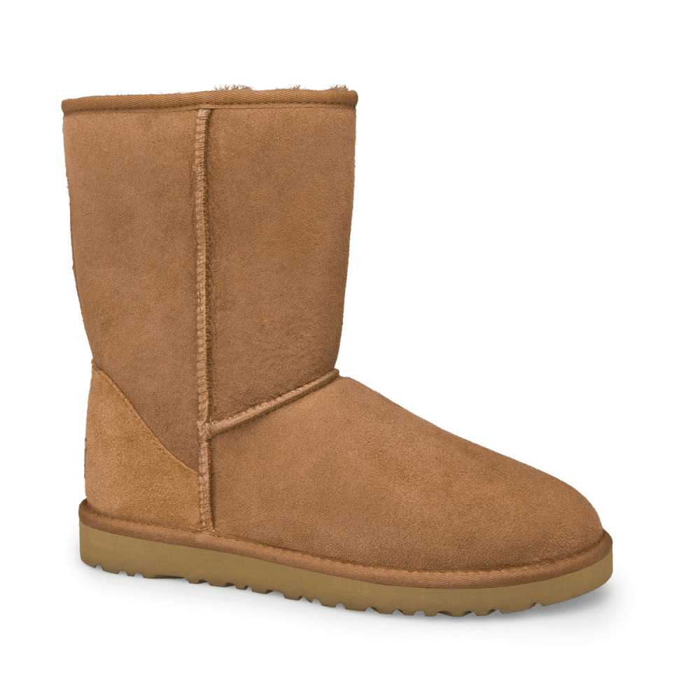 Uggs Shoes Womens