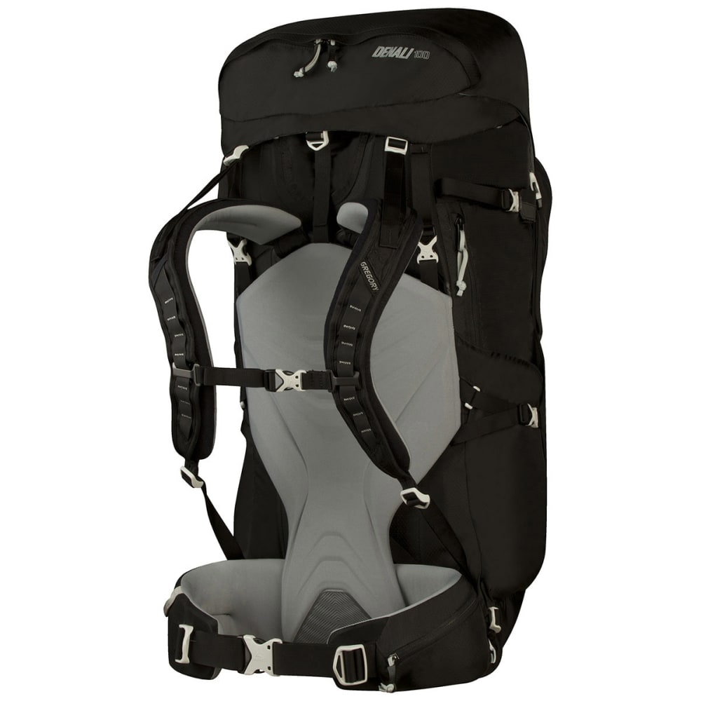 GREGORY Denali 100 Backpack - BASALT