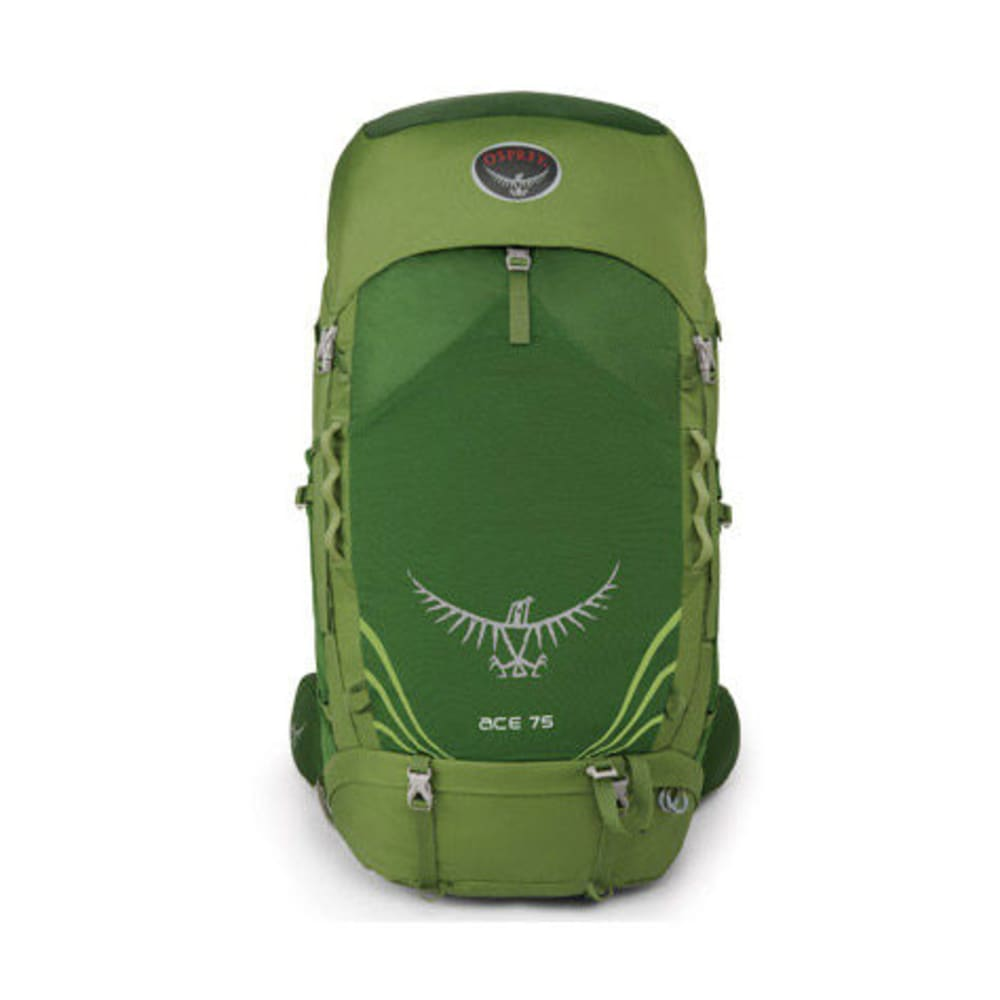OSPREY Kids' Ace 75 Backpack - IVY GREEN