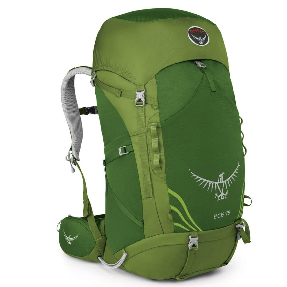 OSPREY Kids' Ace 75 Backpack - IVY GREEN