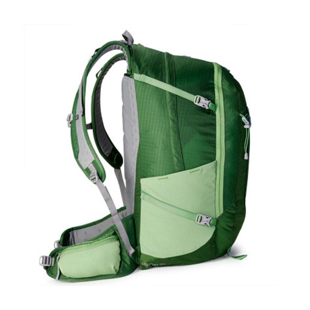 EMS® Sector 35 Daypack - JUNIPER