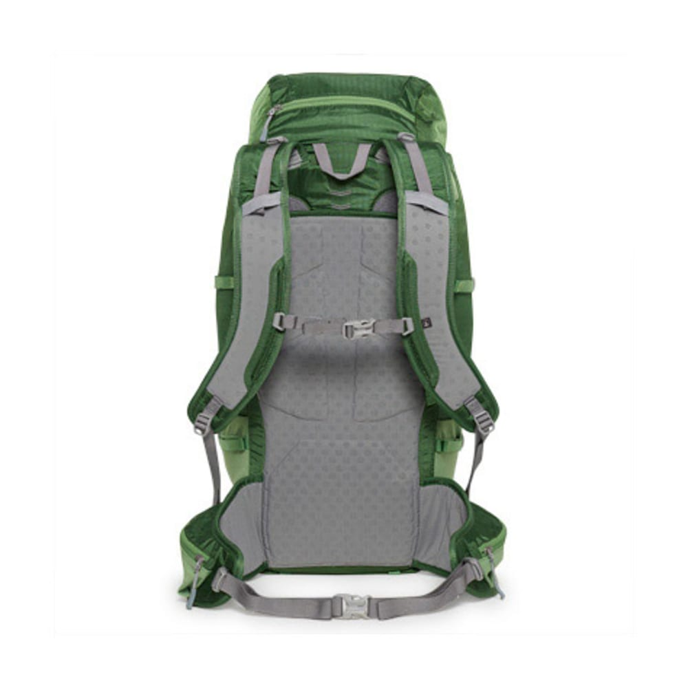 EMS® Sector 42 Backpack  - JUNIPER
