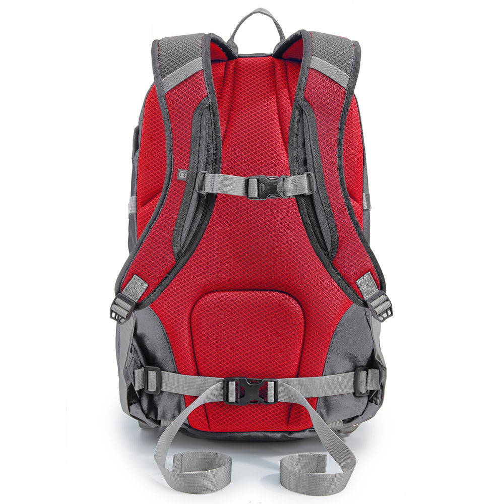 EMS® 4WJIVE Daypack  - PEWTER/RIBBON RED