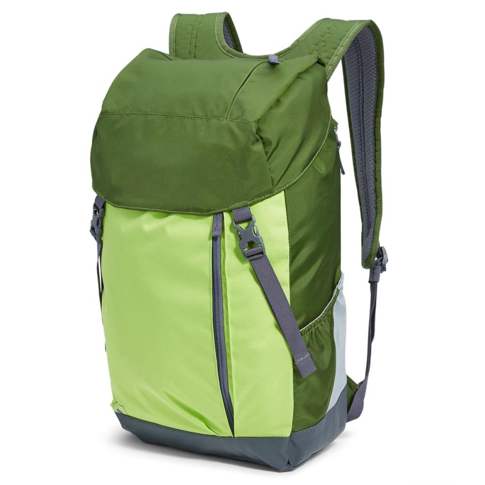 EMS® Jasper Daypack - CHIVE