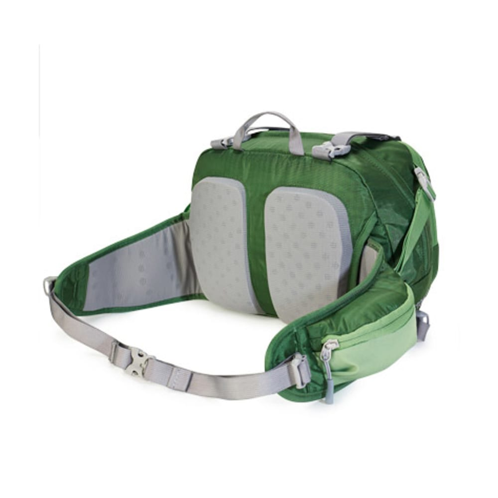 EMS® Sector 10 Waist Pack  - JUNIPER