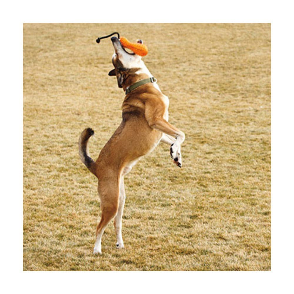 RUFFWEAR Gourdo Dog Toy - ORANGE