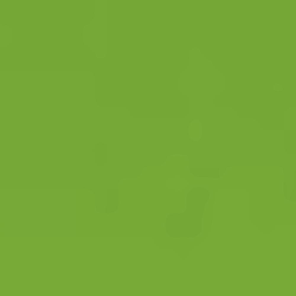 GREEN/77313