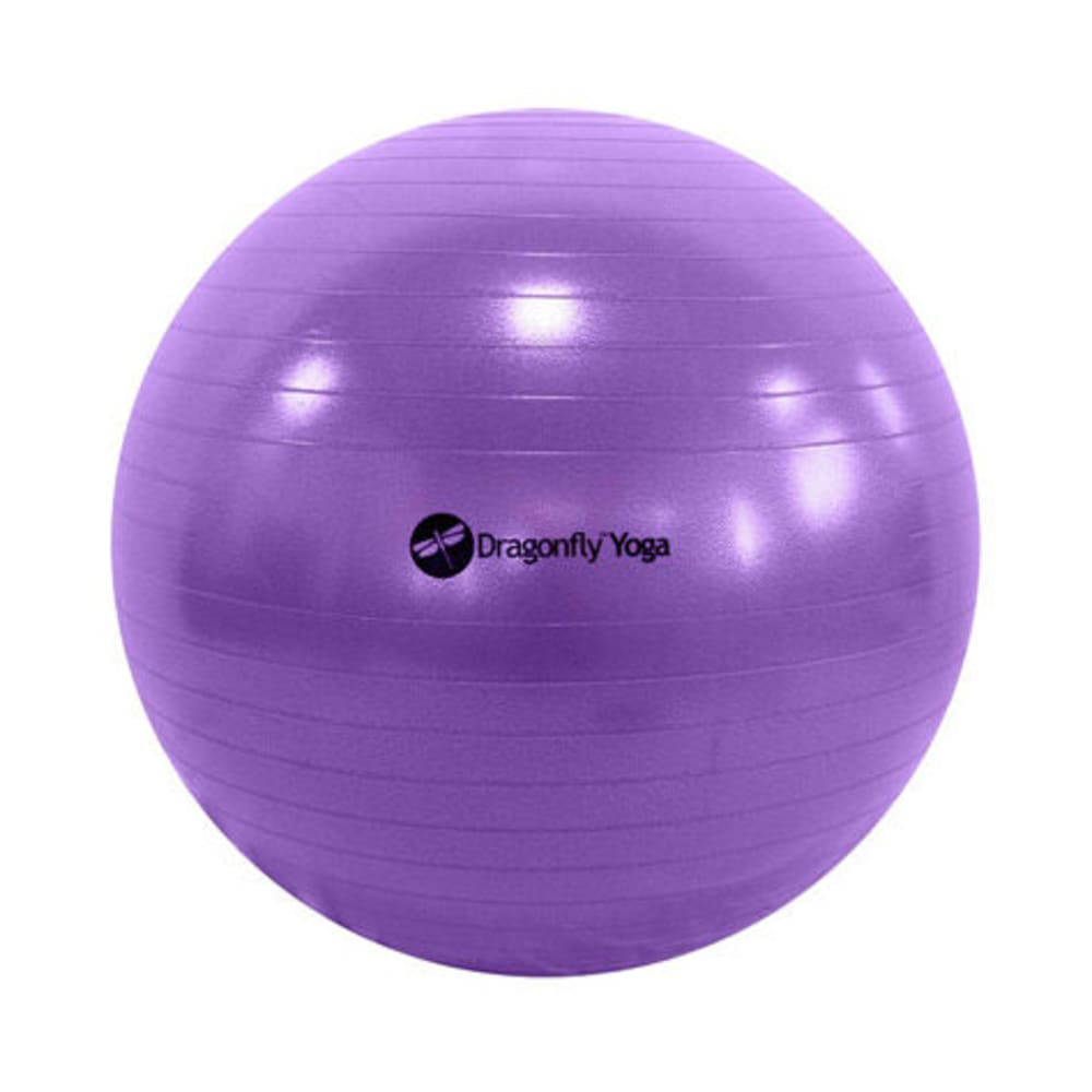 65cm Yoga Ball & Pump in Purple - PURPLE
