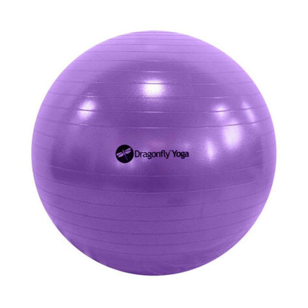 65cm Yoga Ball & Pump in Purple - PURPLE