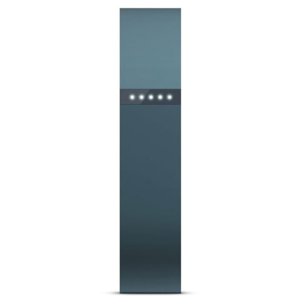 FITBIT Flex Wireless Activity Tracker - SLATE