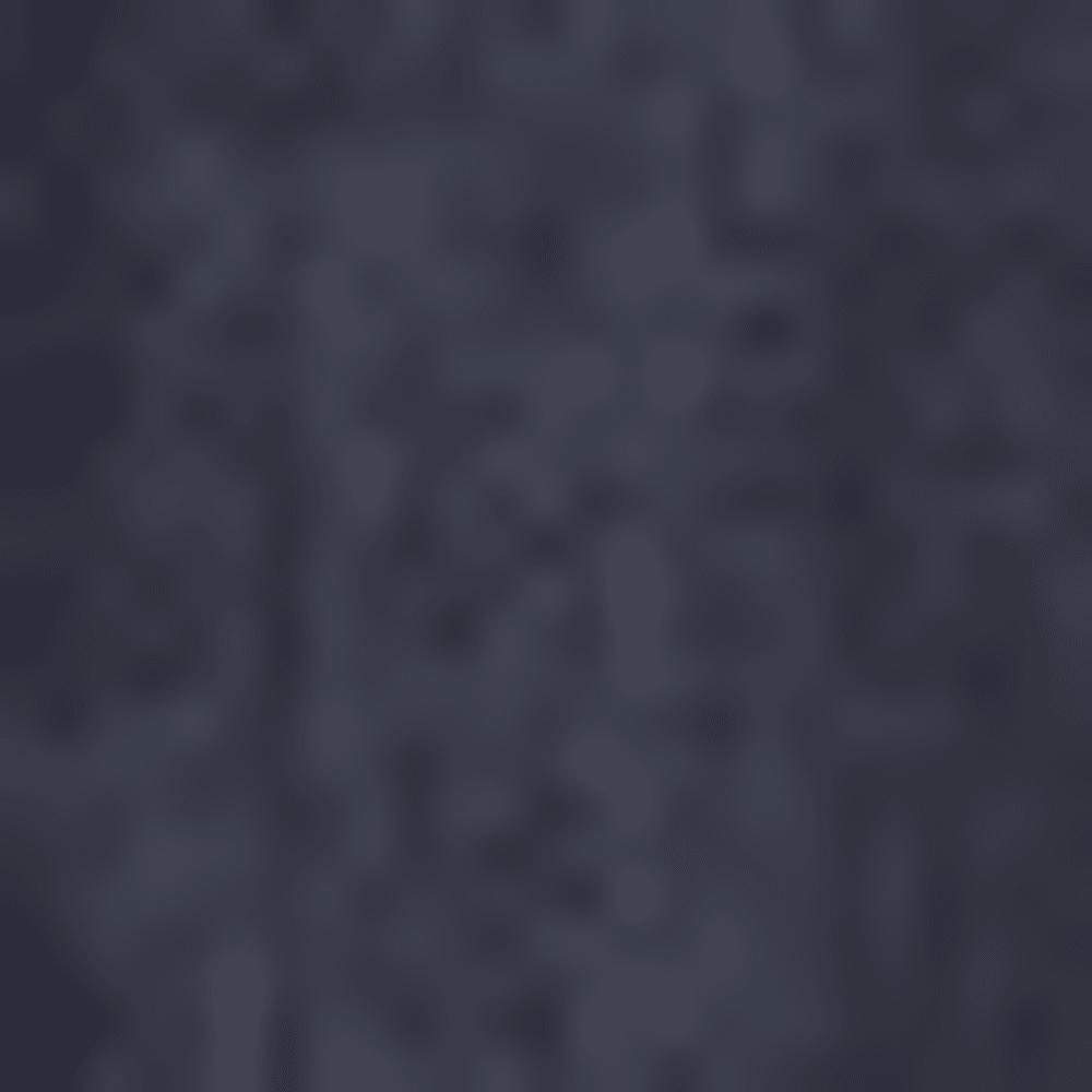 RIGID DRAGON 0025