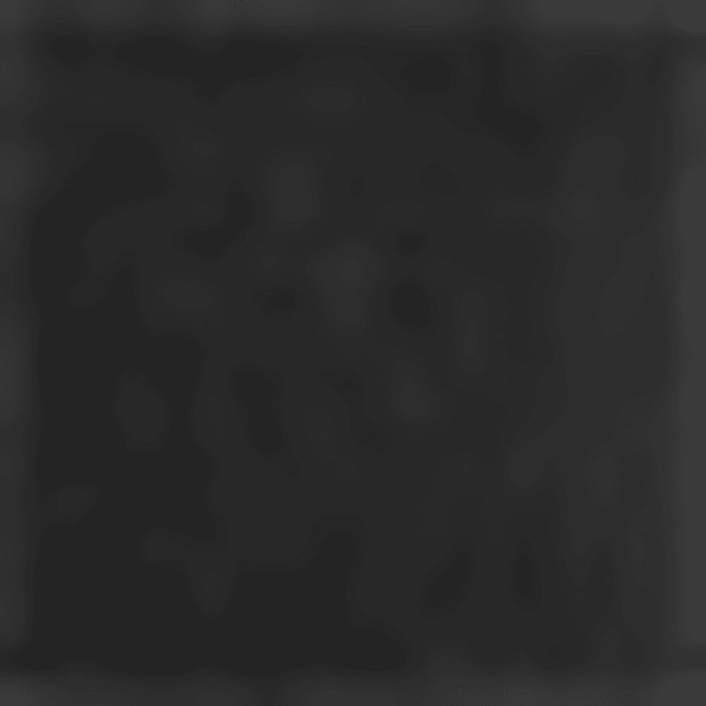 BLACK 16028 disc
