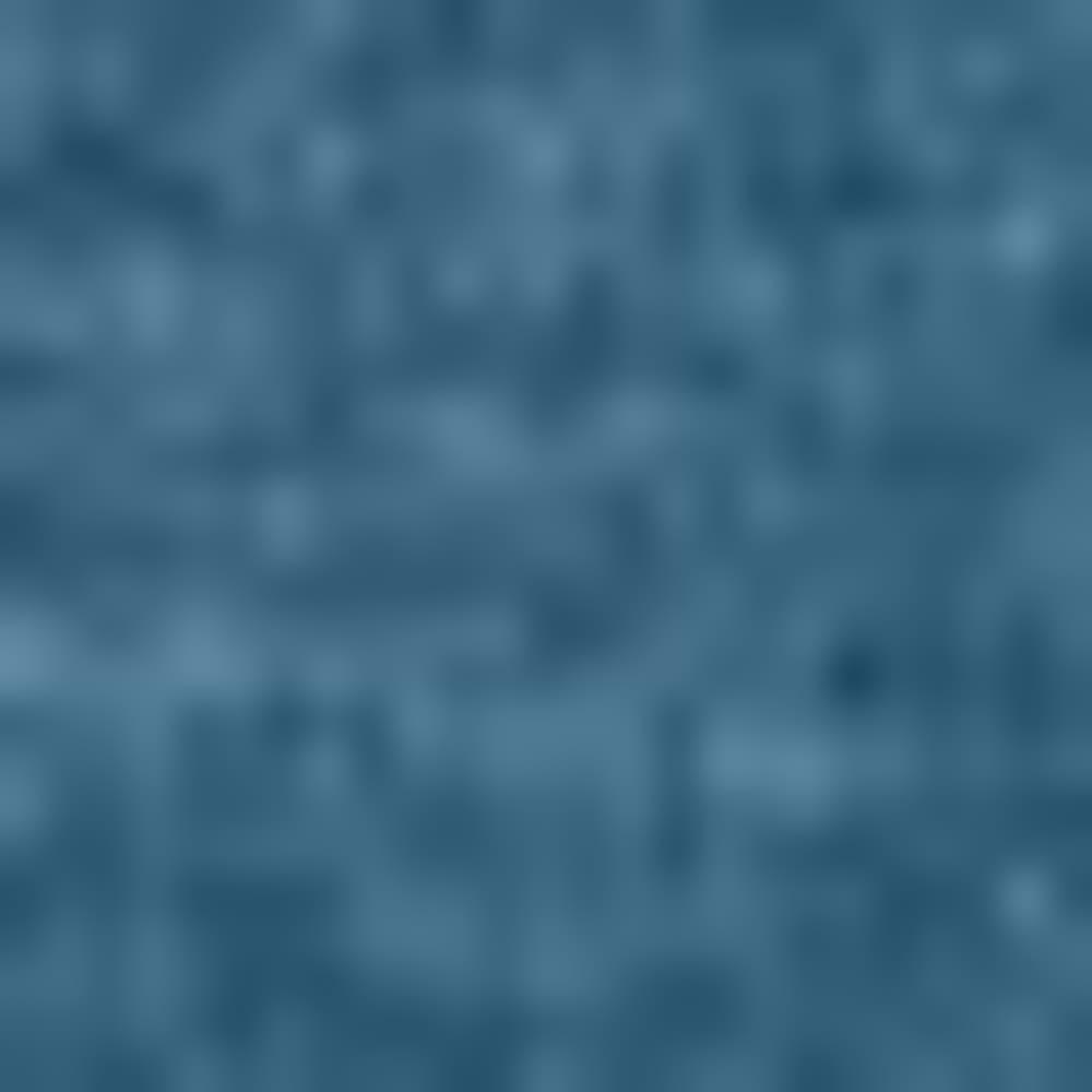 BLUE HERON-407