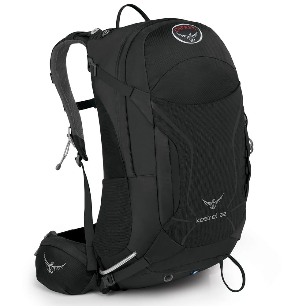 OSPREY Kestrel 32 Daypack, Ash Grey - ASH GREY