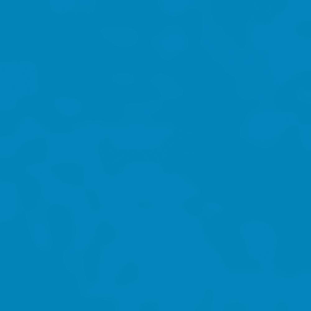BLUE ASTER EMB-LYK