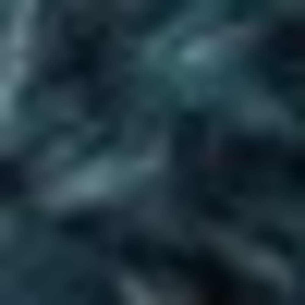 KODIAK BLUE CNQR-WLR