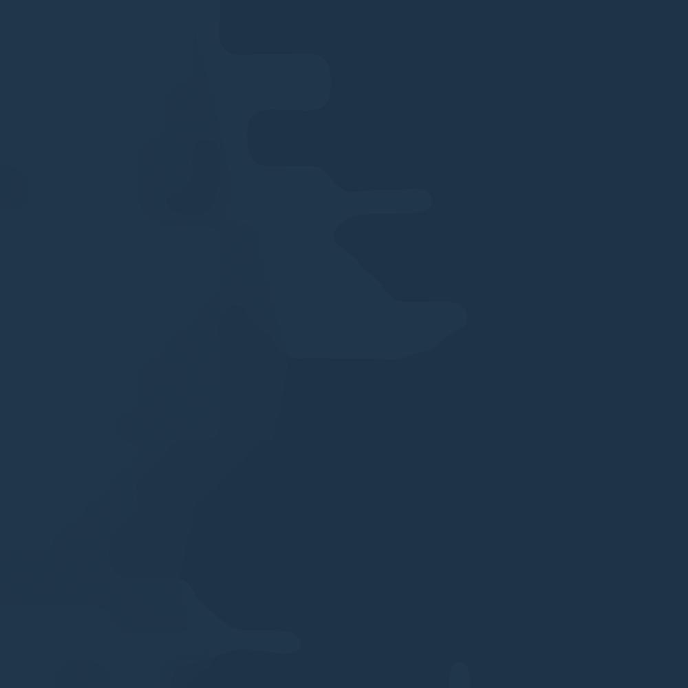 NAVY BLUE 1203