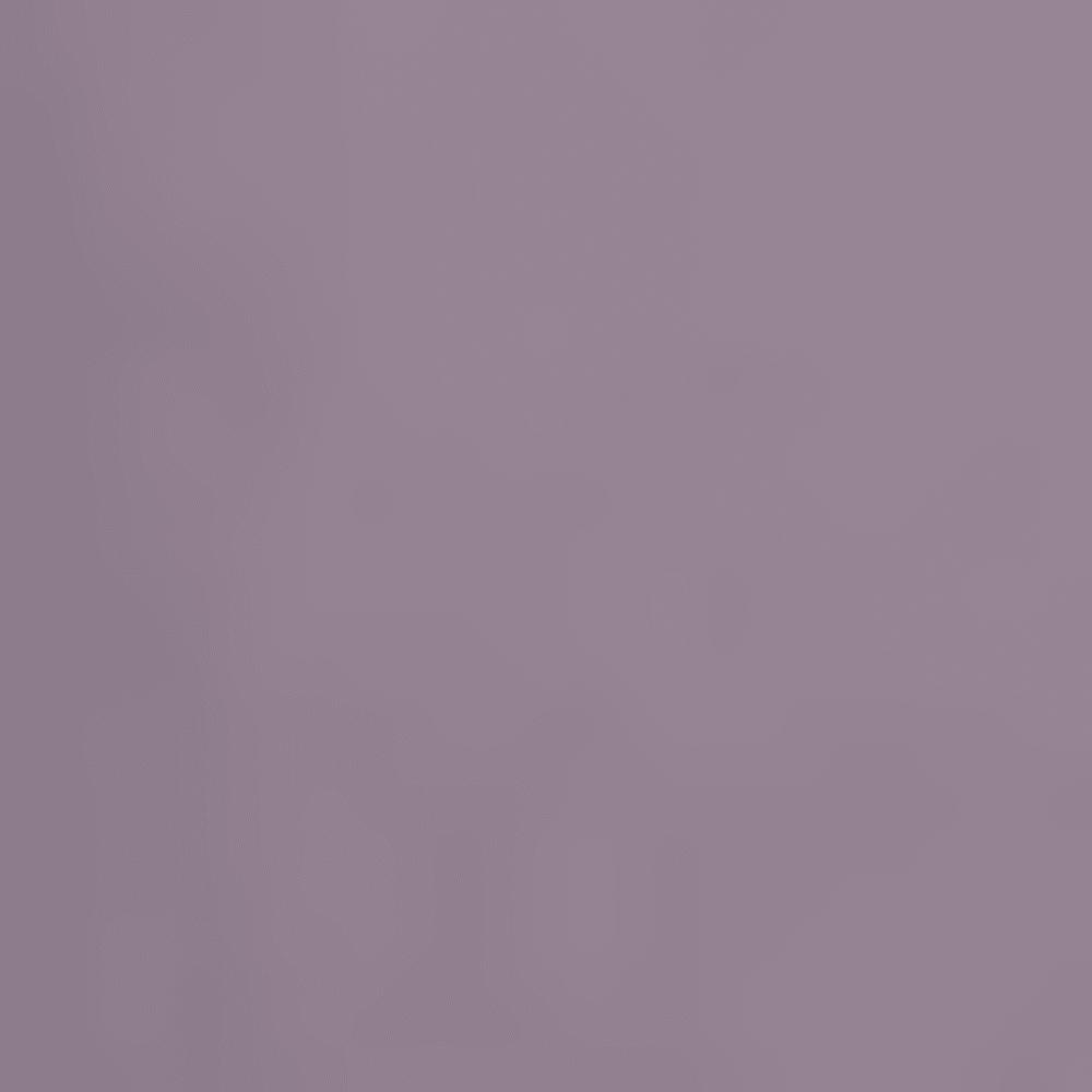 AUBERGINE 341847