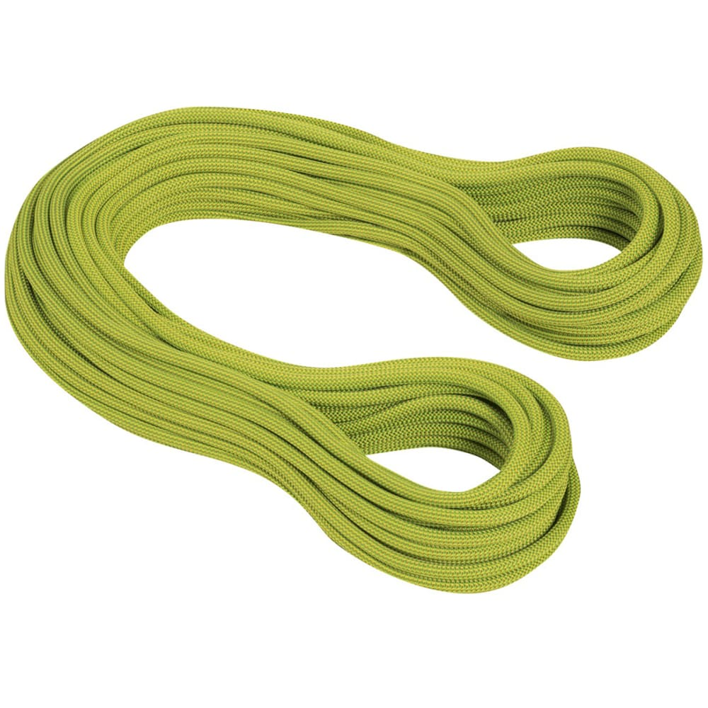 MAMMUT Infinity Dry Climbing Rope, 9.5mm X 60m - PAPPEL-LIME GREEN