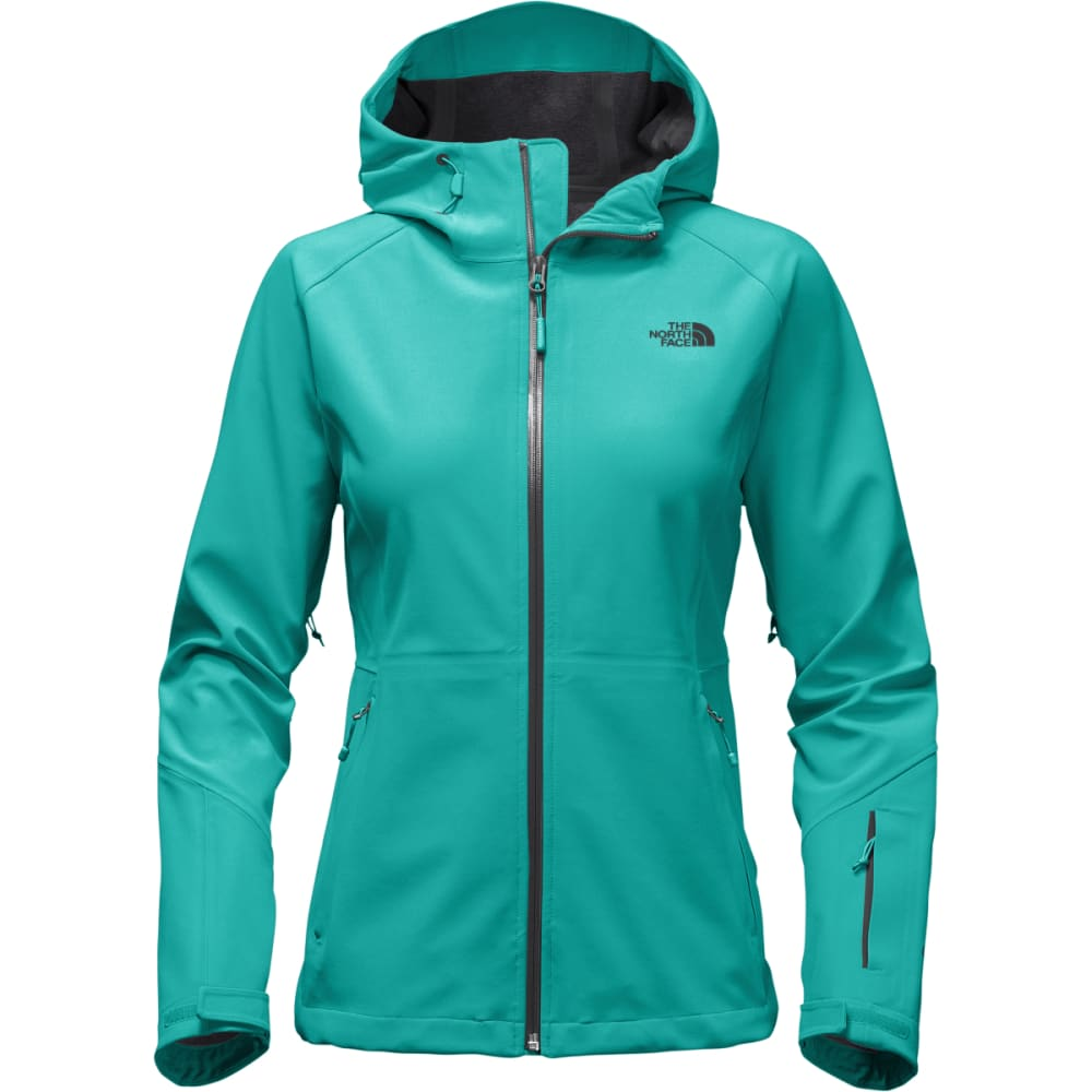 THE NORTH FACE Women's Apex Flex GTX Jacket - ZCU-POOL GREEN